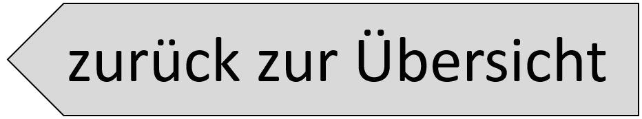 zurück-zur-Übersicht-Button
