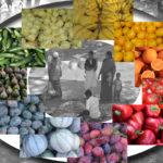 Farben des Marktes